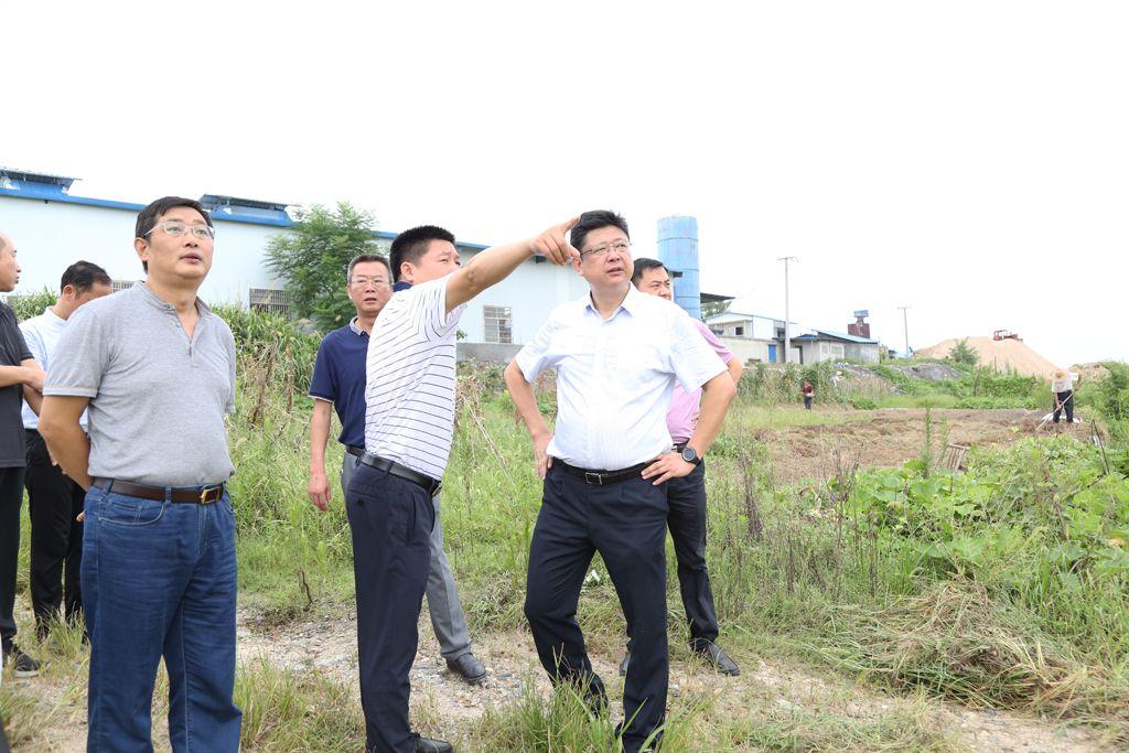 熊亚平巡查隽水河:严格落实河长巡查管理制度